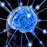 راهکارهای بهبود حافظه