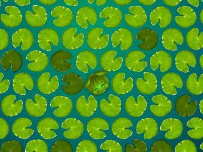 Frog-Escape---Brain-Games