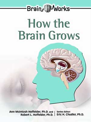 42 - How the Brain Grows-index